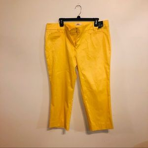 New York & Company Straight Leg Crop Pants